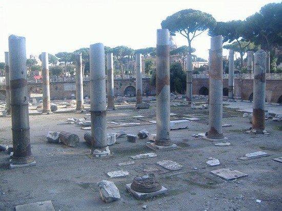 Mercati di Traiano - Museo dei Fori Imperiali: Imperial Forum.