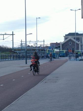 มิดเดลเบิร์ก, เนเธอร์แลนด์: Child on the back of a bike dressed up (and colored) like a Pete.