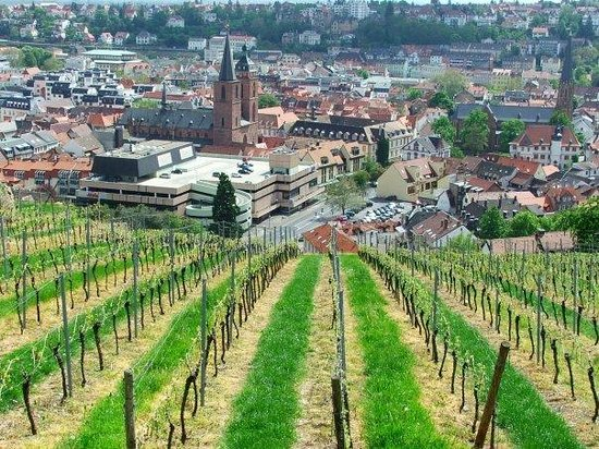นอยซตัดท์, เยอรมนี: Vista de Neustadt an der Weinstrasse