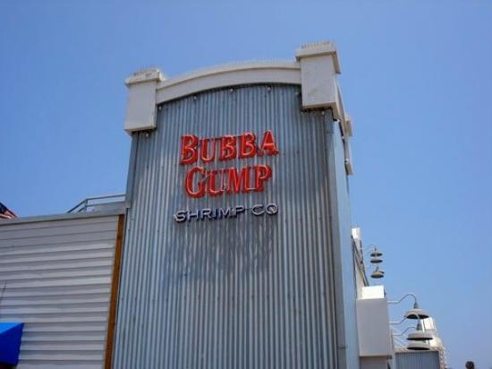 Bubba Gump Shrimp Co.: FORREST GUMP!