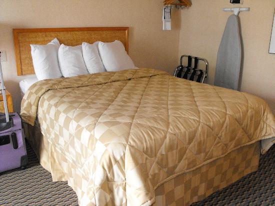 Comfort Inn Winnipeg Airport: bed