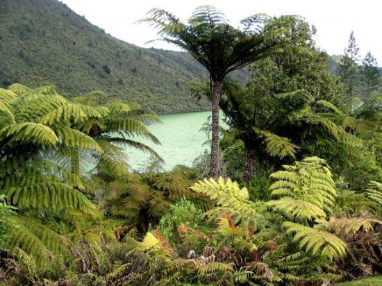 """โรโตรัว, นิวซีแลนด์: The """"Green Lake"""""""