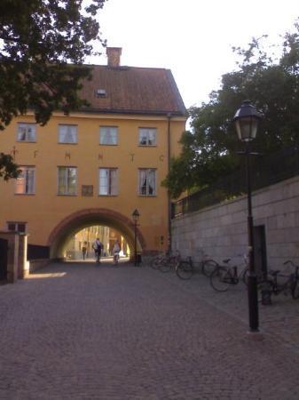 อุปซอลา, สวีเดน: Uppsala- verso il duomo