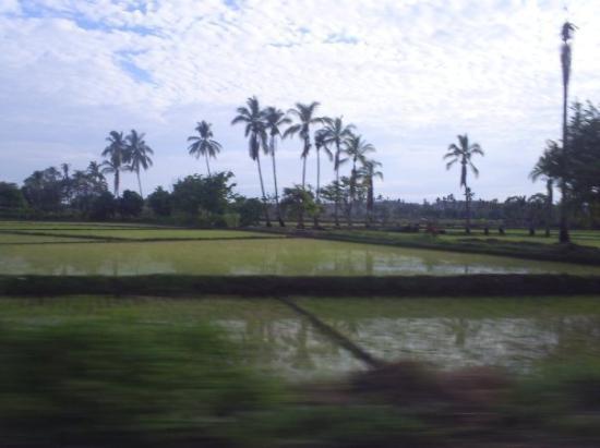 Piura ภาพถ่าย