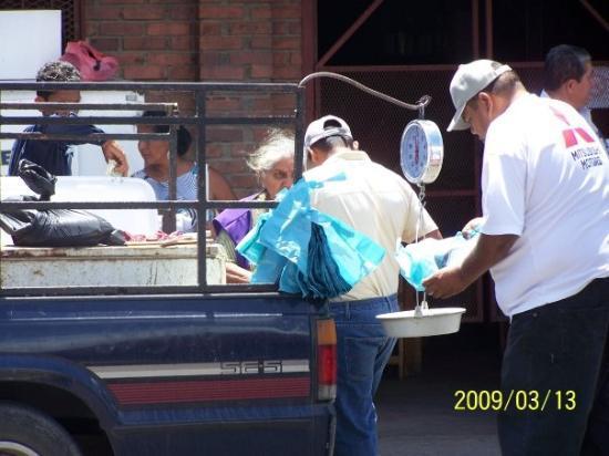 เปโนโนเม, ปานามา: This guy was chopping up fish and selling out of truck