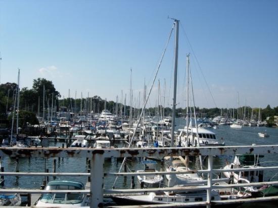 แอนแนโพลิส, แมรี่แลนด์: Annapolis, MD - 2005
