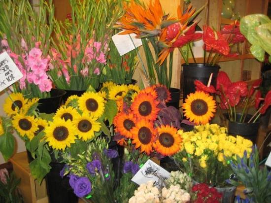 Granville Island Public Market: Gorgeous flowers at the public market
