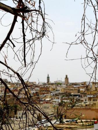 ฟาซ, โมร็อกโก: Meknes