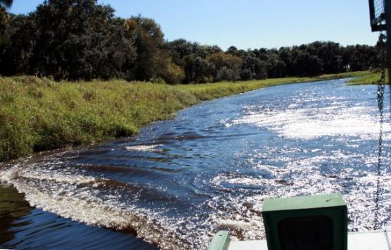 Myakka City, ฟลอริด้า: Myakka, Florida Myakka River State Park