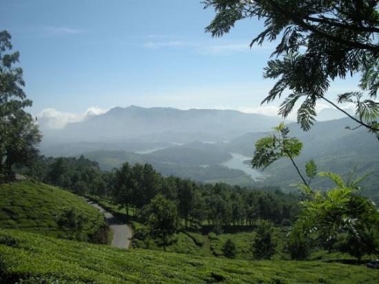 มุนนาร์, อินเดีย: World's Best Wallpaper ! The view from Club Mahindra Munnar !