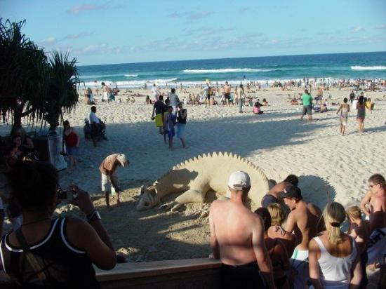 Surfers Paradise Beach: Bloody dragons.....they get everywhere