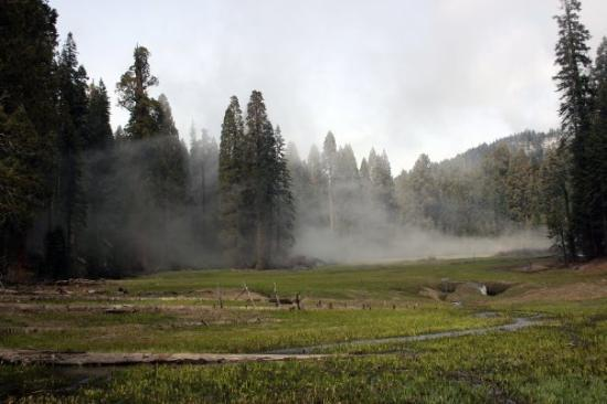 Sequoia and Kings Canyon National Park, แคลิฟอร์เนีย: Three Rivers, California Sequoia National Park Crescent Meadow