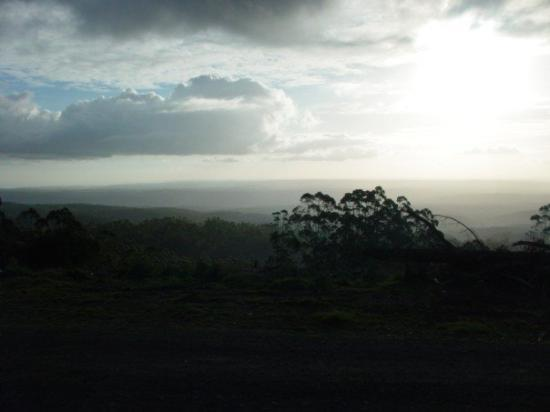 Hume Highway: Some random piece of scenery going south out of Melbourne towards the 12 Apostles....