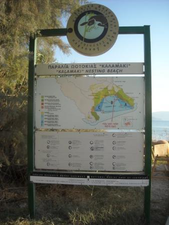 Laganas, กรีซ: KALAMAKI