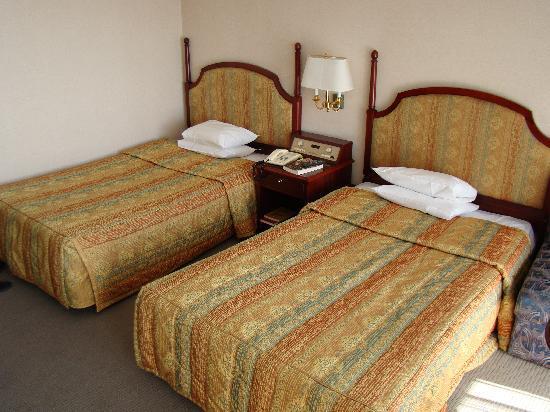 Hotel Concorde Gyeongju: Beds