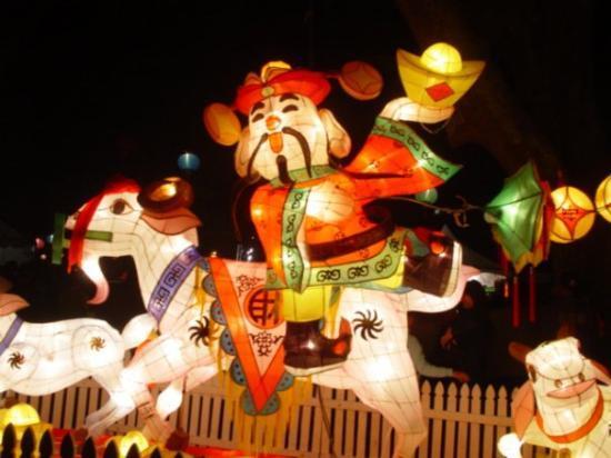โอกแลนด์เซ็นทรัล, นิวซีแลนด์: Chinese Lantern Festival Albert Park