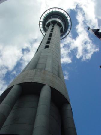 สกายทาวเวอร์: Ooo thats a tall building