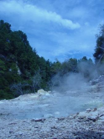Wai-O-Tapu Thermal Wonderland: This is what gives Rotorua it's distinctive aroma