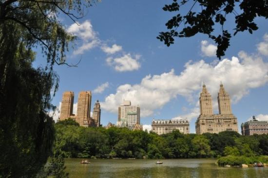เซ็นทรัลปาร์ค: Central park.