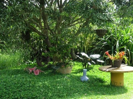 Tagaytay, ฟิลิปปินส์: Moon Garden