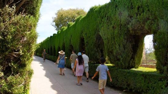 กรานาดา, สเปน: DSC05779