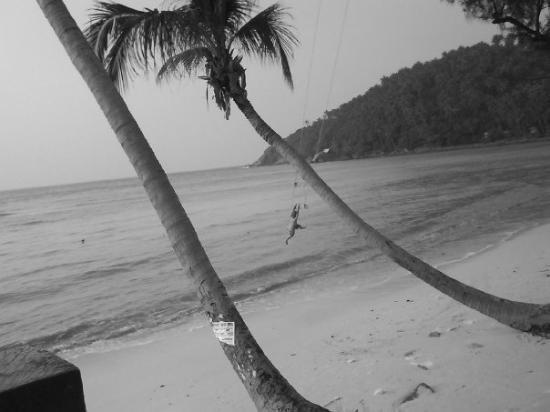 หาดสลัด: the flying boy.....