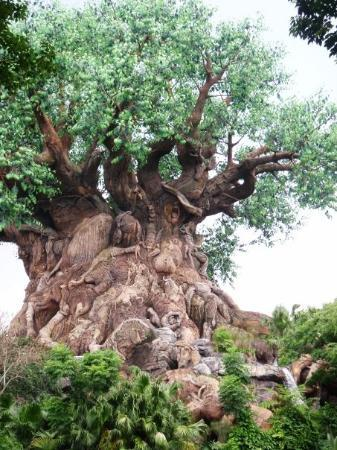 ดิสนียส์ แอนิมอล คิงดอม: Tree of Life in Animal Kingdom
