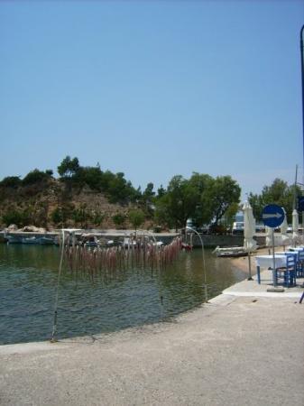 Limenaria, กรีซ: hmmmm....lecker Fischi
