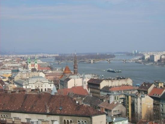 Margaret Island (Margitsziget): Die Margareteninsel....grüne Oase von Budapest