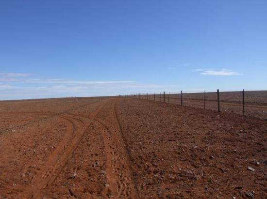 Coober Pedy, ออสเตรเลีย: The Dog Fence 5000kms of fencing running acroos Australia