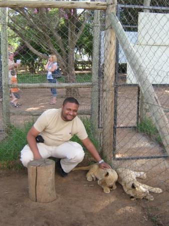Lion and Safari Park ภาพถ่าย