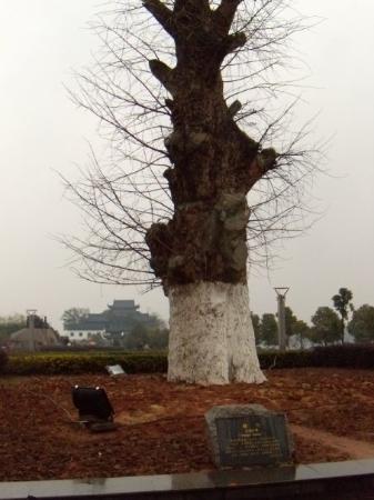 Hengyang ภาพถ่าย