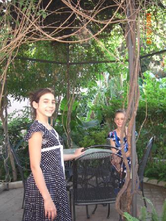 Hotel Villa Schuler: The garden