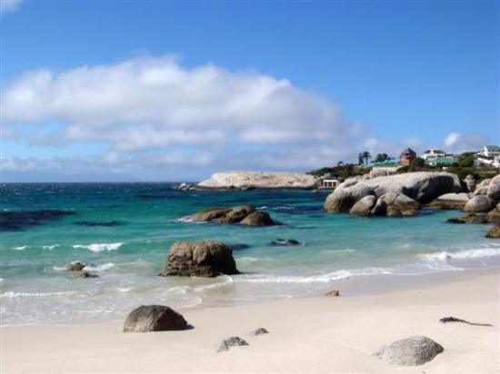 Boulders beach - guess what's special here?