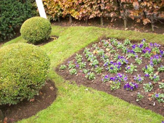 เมืองลักเซมเบิร์ก, ลักเซมเบิร์ก: Love the green grass & colorful flowers