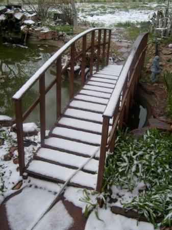 เดนเวอร์, โคโลราโด: Easter morning...fresh snow