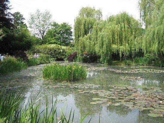 สวนและบ้านของเคลาด์โมเนท์: Water lilies at Claude Monet's home