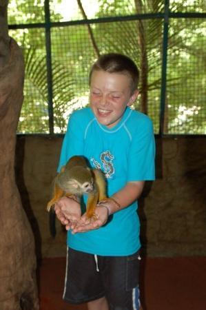 Liam feeding a monkey at the Los Veranos canopy tour.