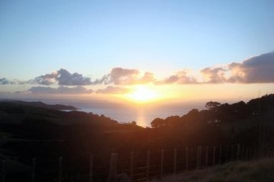 โอกแลนด์เซ็นทรัล, นิวซีแลนด์: Sunset at Waiheke, stunning!!