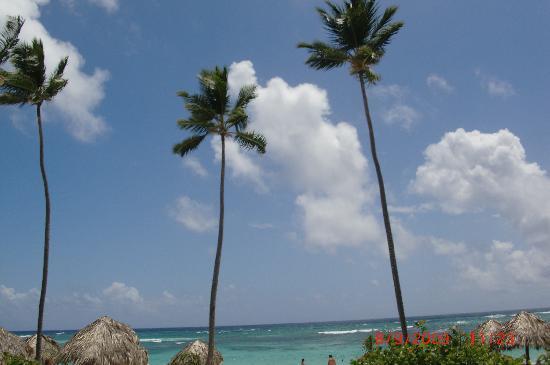 Majestic Elegance Punta Cana: Awesome Beach