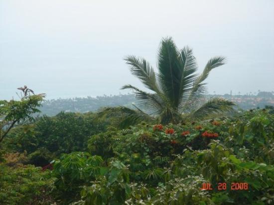 เกาะฮาวาย, ฮาวาย: Entering Kona area