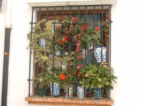 กรานาดา, สเปน: Fiori e grate