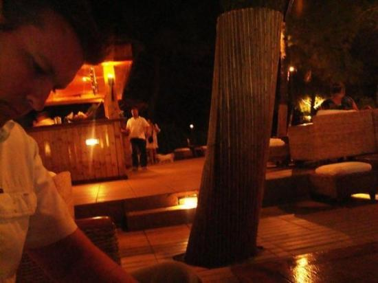 Bol, โครเอเชีย: The Woodland Bar again
