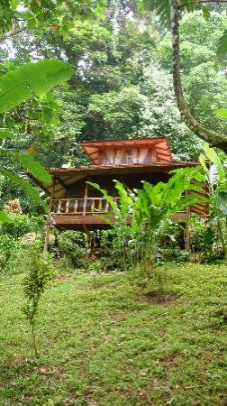 Samasati Yoga & Wellness Retreat: Bungalows