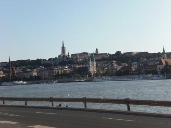 Danube River: Buda