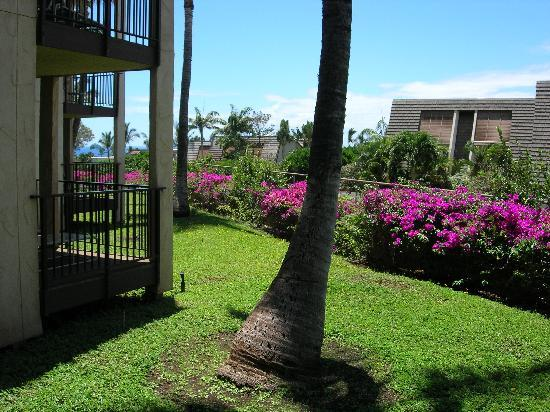 Aston Maui Hill: view from our lanai