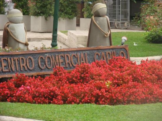 มาร์เดลพลาตา, อาร์เจนตินา: CARILO 2009
