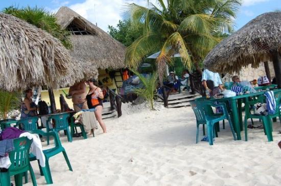 Cozumel (เกาะโกซูเมล), เม็กซิโก: the private beach we went to in Cozumel