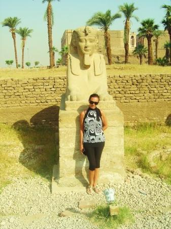 Avenue of Sphinxes: SFINKS 2009