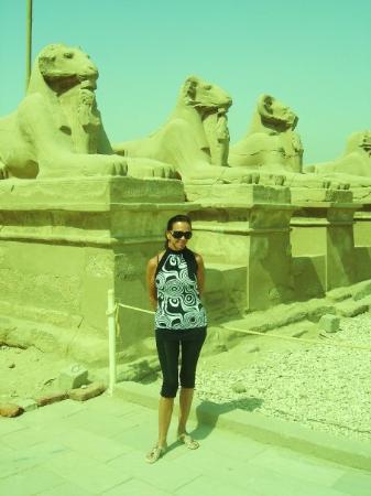ลักซอร์, อียิปต์: RAMMEKOPPEN 2009